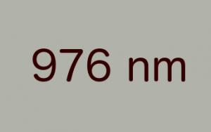 BWT 976 nm